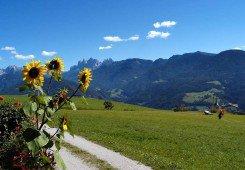 Urlaub in Feldthurns 1