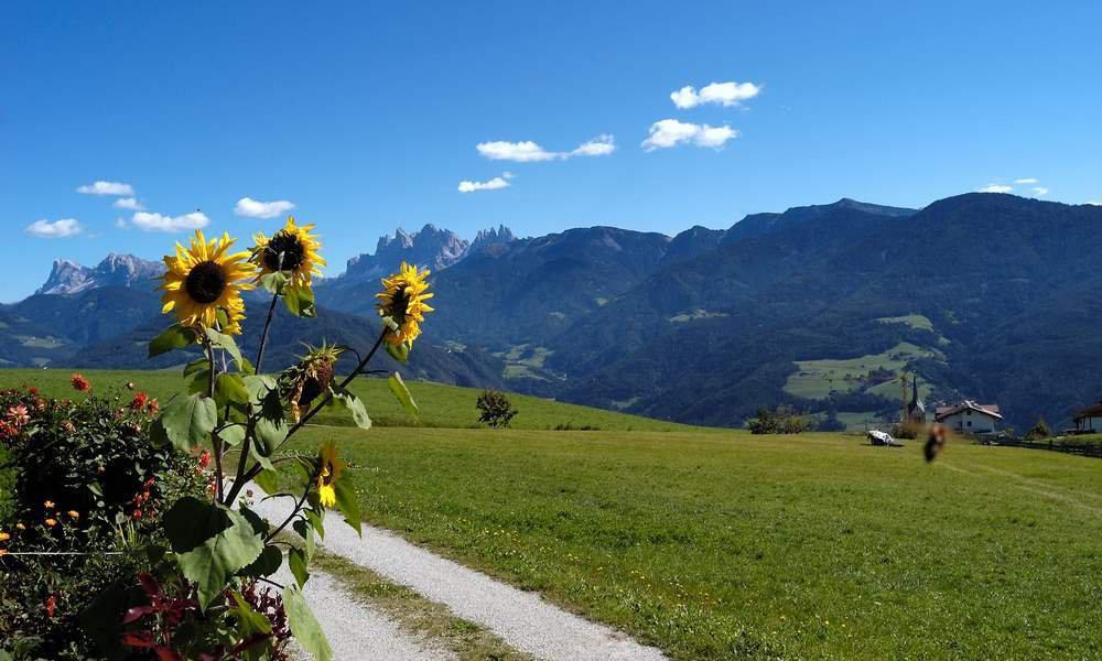 Abwechslungsreicher Sommerurlaub für Groß und Klein