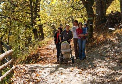 Herbst im Eisacktal - Kastanienweg 3