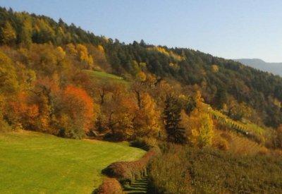 Herbst im Eisacktal - Kastanienweg 7
